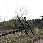Последствие сильного ветра в Приднестровье