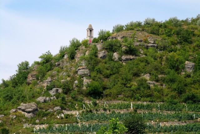 vinogradnie-terasi