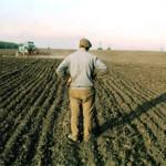 До 1 октября продлен срок перерегистрации земельных пайщиков