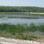 В Кишиневе пройдет конференция по теме экологического состояния реки Днестр