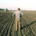 Закон о земельных паях подписали в Приднестровье