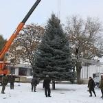В Приднестровье устанавливают городские елки