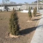 В Дубоссарах благоустраивают новые парки