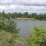 В заповеднике «Ягорлык» ведутся работы по поддержанию нереста рыб
