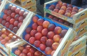 В Приднестровье введена пошлина на импортные персики