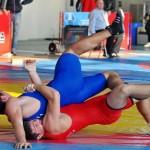 Второе место занял Дмитрий Чакуста на 2-ых юношеских Олимпийских играх