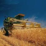 Григориопольский район собрал 100 тысяч тонн зерна
