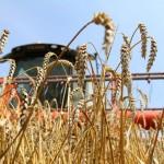 В Дубоссарах праздновали сбор урожая
