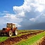 Президент ПМР продлил срок действия фиксированного сельхозналога до 2020 года