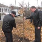 В Дубоссарском районе осуществляется программа по озеленению