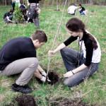 В Бендерах прошли работы по озеленению