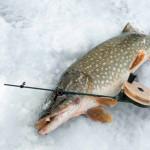 В Бендерах напомнили рыбакам об опасности зимней рыбалки