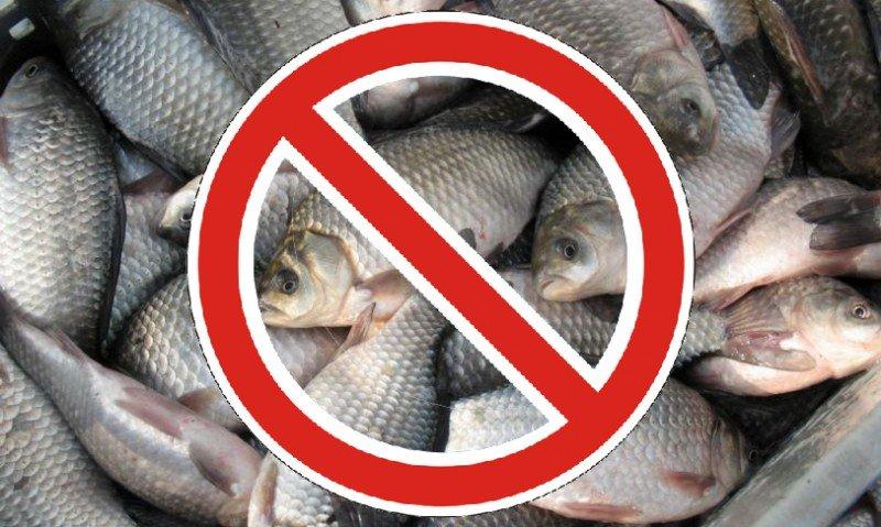 время запрета на рыбалку краснодарский край