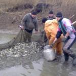 В ПМР продолжаются работы по зарыблению водоемов