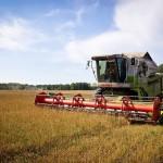 Аграрии ПМР собрали свыше 350 тысяч тонн озимой пшеницы