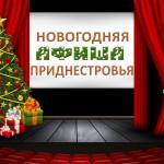 Новогодняя программа 20117