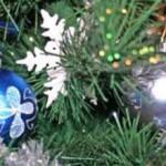 В ПМР утвердили новогоднюю программу
