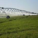 В ПМР намерены увеличить площади орошаемых земель